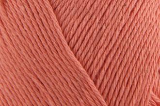 Scheepjes Cotton 8 -  (650) - 50g