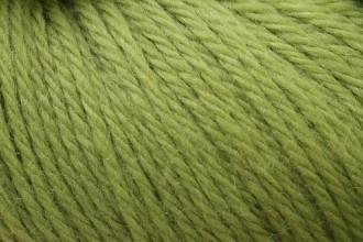 Cascade 220 - Leaf Green (1002) - 100g