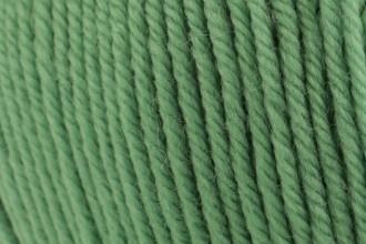 Cascade 220 Superwash - Peppermint (226) - 100g