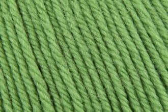 Cascade 220 Superwash - Green Apple (802) - 100g