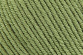 Cascade 220 Superwash - Moss (841) - 100g