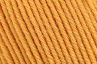 Cascade 220 Superwash - Golden (877) - 100g