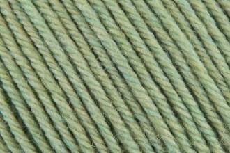 Cascade 220 Superwash - Celery (905) - 100g