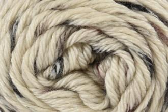 Caron Simply Soft Speckle - Seashell (61009) - 141g