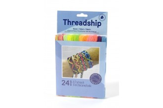 DMC Threadship - Six Strand Floss Pack - Neon (24 Skeins)