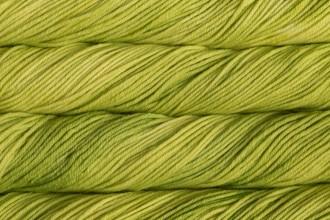 Malabrigo Rios - Apple Green (011) - 100g