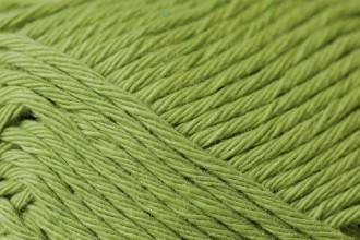 Rico Creative Cotton (Aran) - Pistachio (41) - 50g
