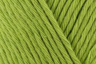 Scheepjes Cahlista - Kiwi (205) - 50g