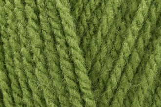 Sirdar Hayfield Bonus DK - Fern Green (603) - 100g