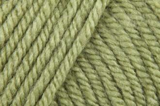 Stylecraft Special Chunky - Meadow (1065) - 100g