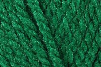Stylecraft Special Chunky - Green (1116) - 100g