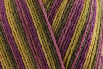 West Yorkshire Spinners Signature 4 Ply - Passion Fruit Cooler (811) - 100g