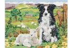 Anchor - Border Collie and Lamb (Tapestry Kit)