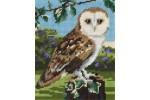 Anchor - Starter Kit - Owl (Tapestry Kit)