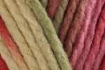 Bernat Softee Chunky Ombre - All Colours