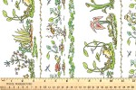 Clothworks - Leap Frog - Borders - White (Y3124-1)
