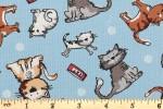 Craft Cotton Co - Quilting Cotton Prints - Friendly Cats (2695-00)