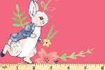 Craft Cotton Co - Peter Rabbit Flowers and Dreams - Flowers and Dreams (2727-01)