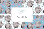 Camelot Fabrics - Cats Rule Collection