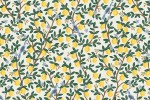 Cotton + Steel - Camont - Lemons - Cream with Gold Metallic (304090-17)