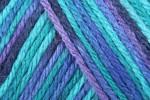 Caron Simply Soft Paints - All Colours