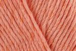 Cygnet Cottony DK - All Colours