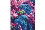 Diamond Dotz - Blue Parrots (Diamond Painting Kit)
