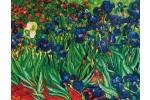 Diamond Dotz - Van Gogh - Irises (Diamond Painting Kit)