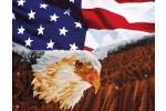 Diamond Dotz - Bald Eagle and Flag (Diamond Painting Kit)