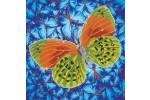 Diamond Dotz - Flutterby Earth (Diamond Painting Kit)