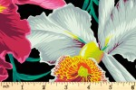 Kaffe Fassett Collective - Philip Jacobs - Orchid - Black