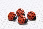 Ladybird Buttons, Red with Black spots, 15mm (pack of 4)