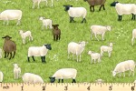 Makower - Village Life - Sheep (2291/1)