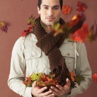 Bernat - Handsome Scarf in Softee Chunky (downloadable PDF)