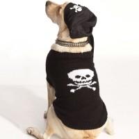 Bernat - I-Matey Dog Coat in Satin  (downloadable PDF)
