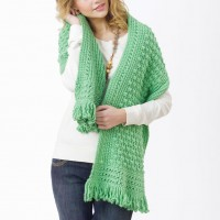 Caron - Friendship Shawl in Simply Soft (downloadable PDF)