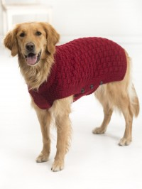 Lion Brand Clifford Dog Sweater in Vanna's Choice (downloadable PDF)