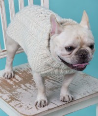 Red Heart - Cabled Dog Sweater in Super Saver (downloadable PDF)