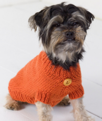 Red Heart - Dog Sweater in Super Saver (downloadable PDF)
