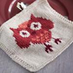 Knitted Owl Dishcloth in Lily Sugar 'n Cream