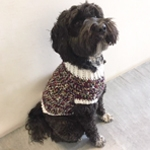 Free Pattern! Dog Sweater crocheted in Cygnet Utopia Chunky